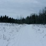 Winter Wonderland…..Submitted by: Kelly B……Photographer: Kelly B…..Jan. 2, 2012