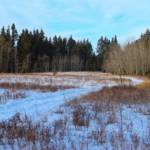Winter countryscape…..Submitted by: Kelly B…….Photographer: Kelly B…..Jan. 2, 2012