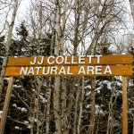 JJ Collett Natural Area Winter Style……Submitted & Photographed By: Kelly B…..March 29, 2014